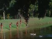 Die Insel der Nudisten
